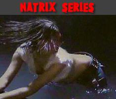 Natrix Serie